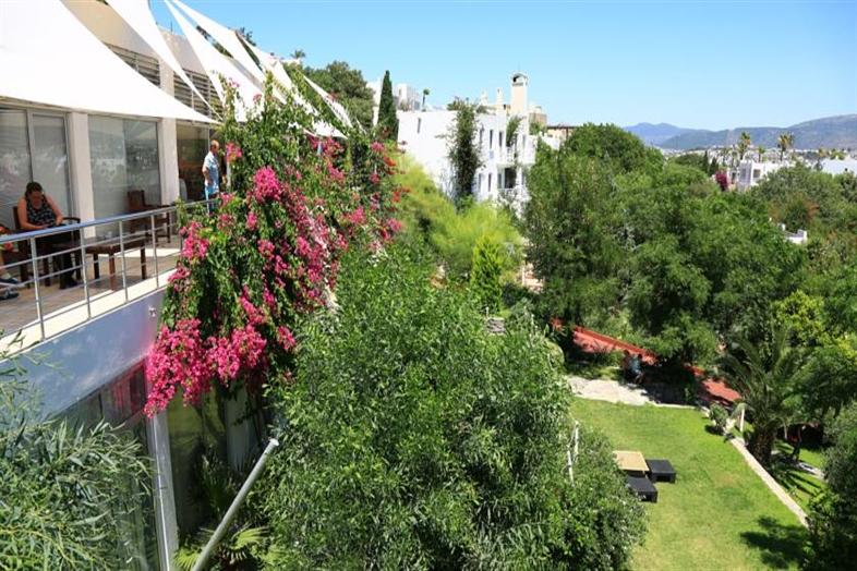 Hotel Rexene Resort
